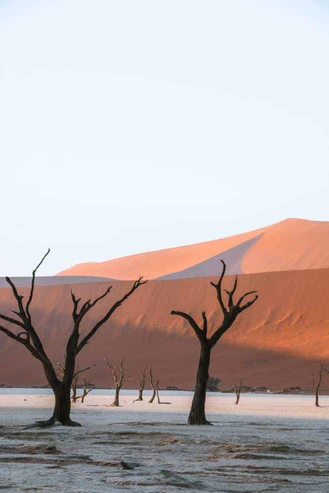 Namibia Deadsvlei sunrise