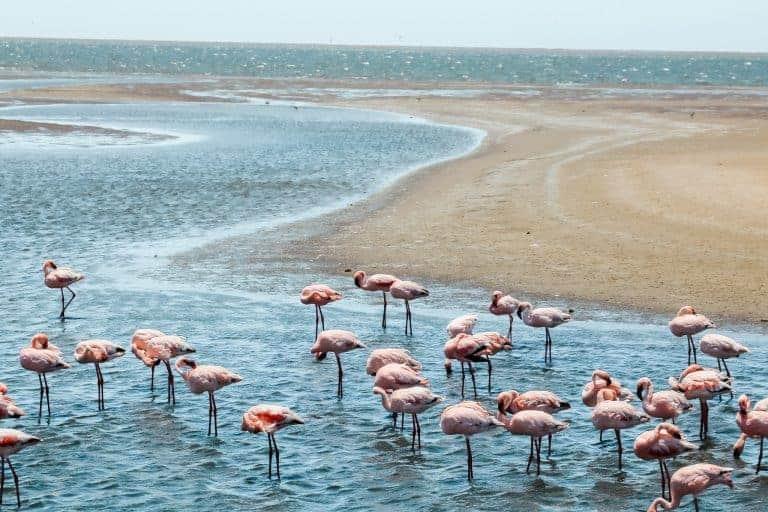 Namibia itinerary to Walvis Bay road trip