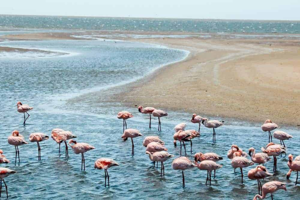 Namibia itinerary to Walvis Bay road trip