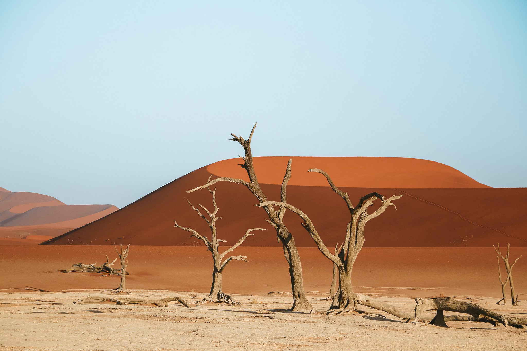 namibia in 25 photos in Deadsvlei
