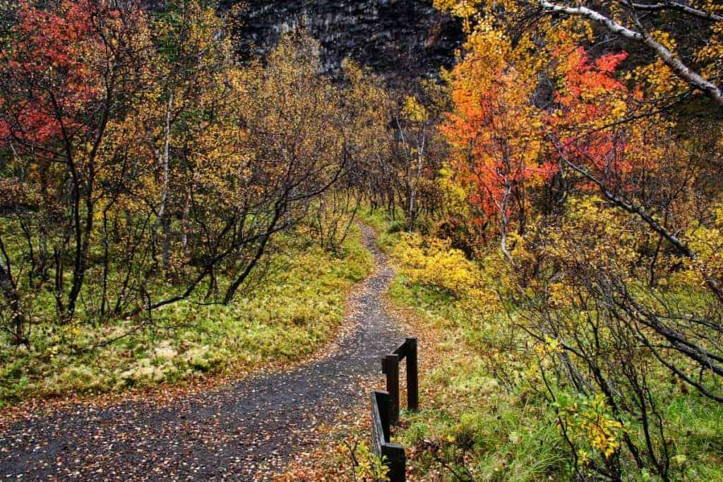 hidden gem in Iceland in the fall
