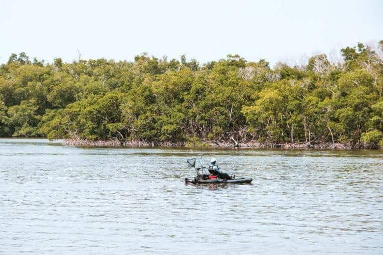 Kayaking at Ten Thousand Islands in Florida USA