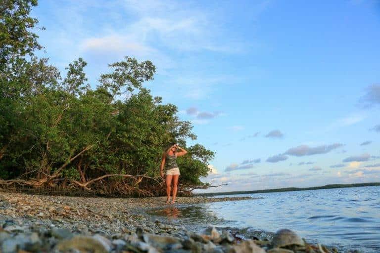 The hidden sanctuary of Ten Thousand Islands in Florida USA