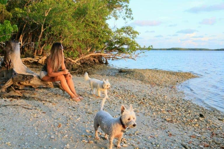 Camping in Ten Thousand Islands