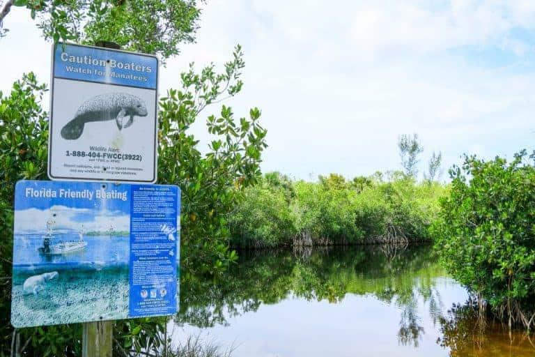 Ten Thousand Islands National Wildlife Refugee