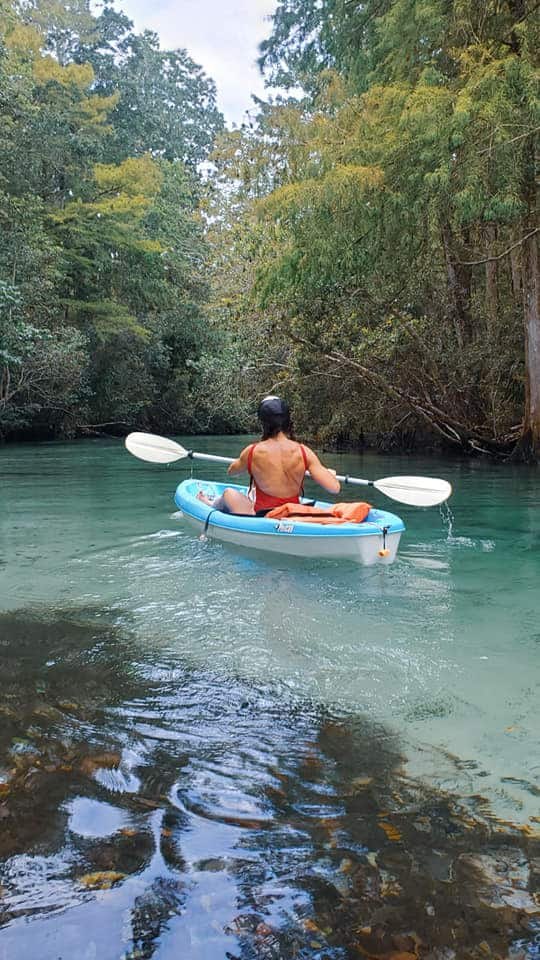Weeki Wachee River is a must do in Florida