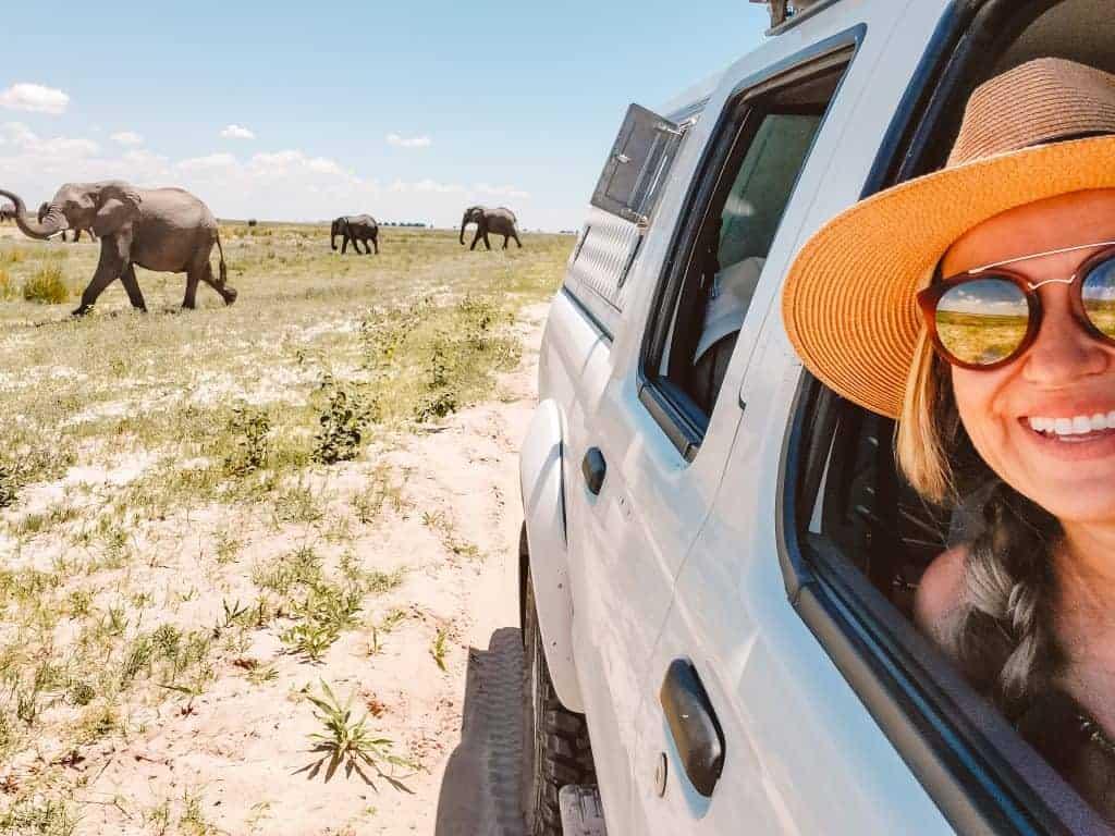 Botswana safari with elephants is the highlight of camping safari in Botswana