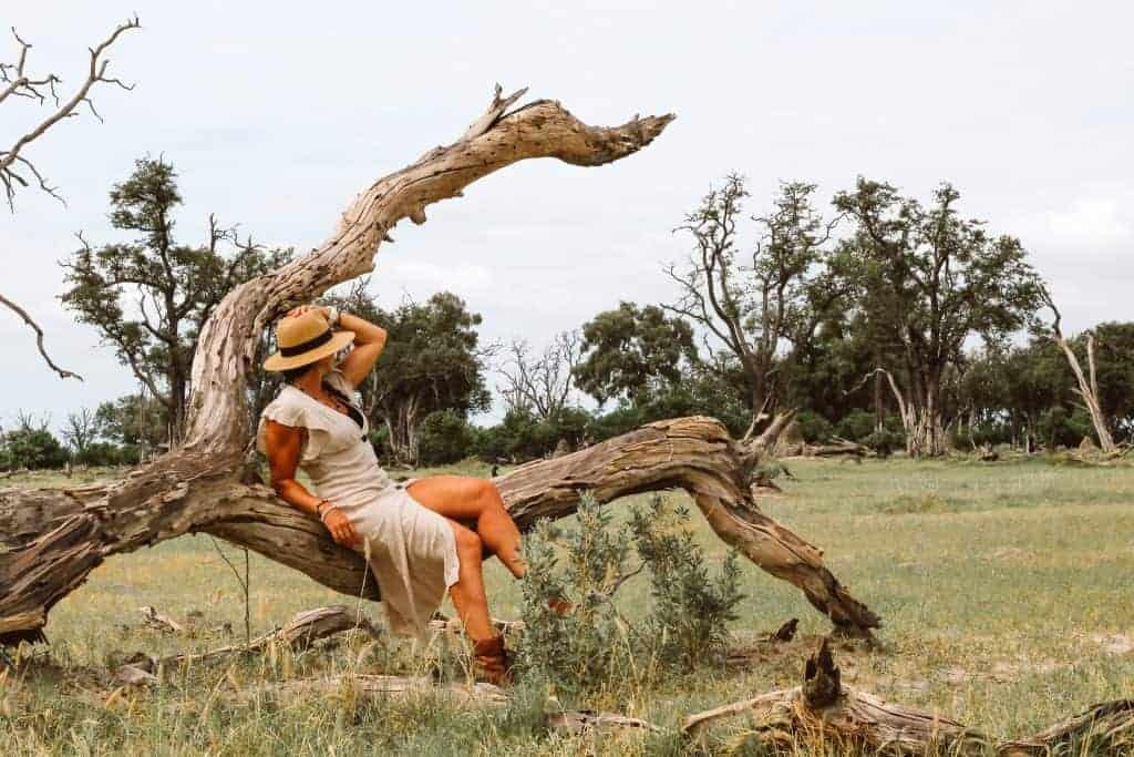 Botswana camping safari