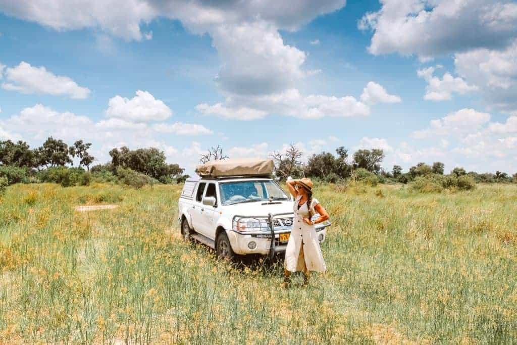 Safari Botswana Chobe and Okavango Delta