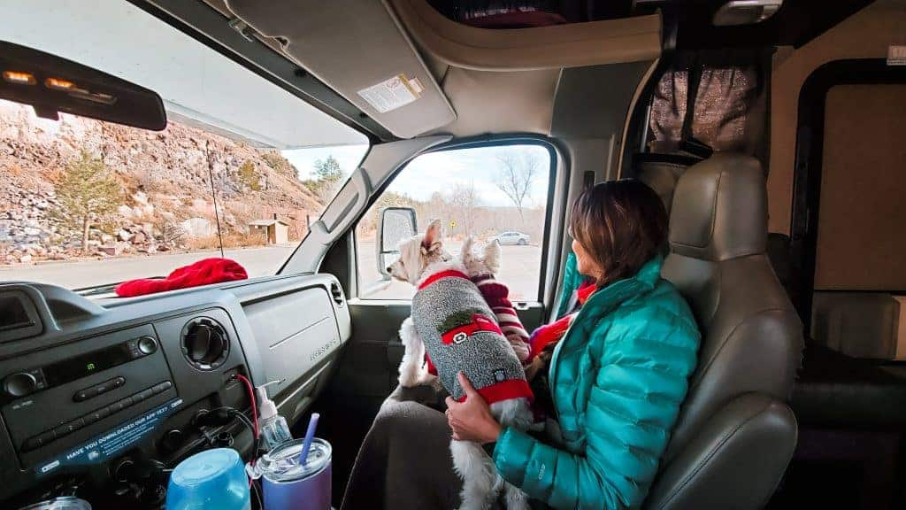 RV road trip with pets