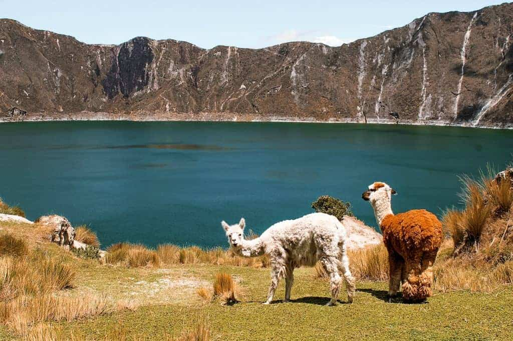 South America Hikes