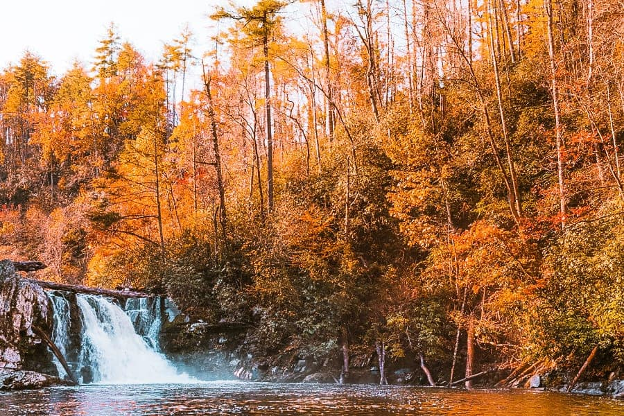 Best hikes in the great Smoky Moutain